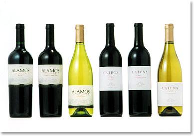 世界5位のワイン王国出身!アルゼンチンワイン飲んだことある?のサムネイル画像