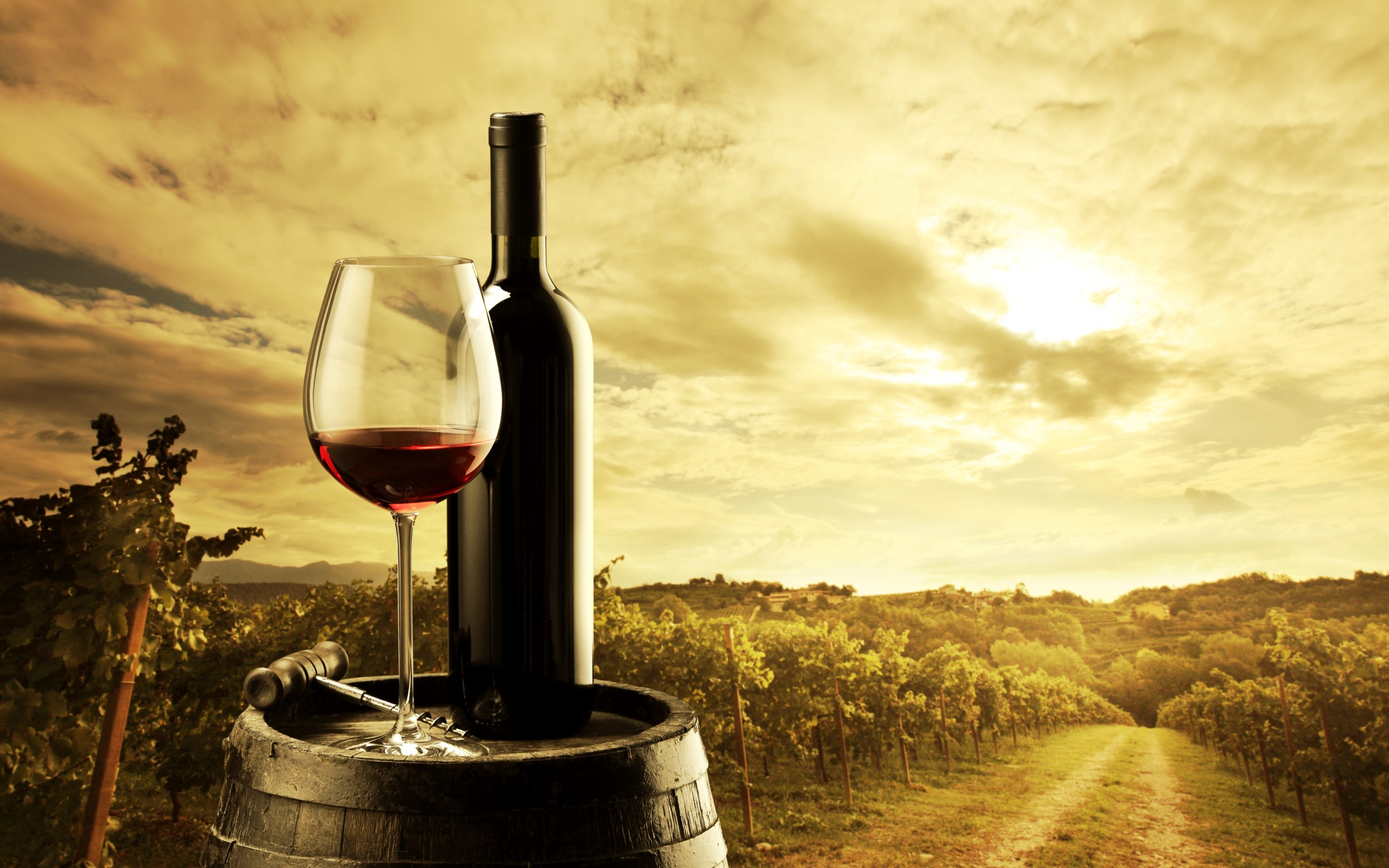 オールワンコイン以下!美味しすぎるチリワインと絶品おつまみのサムネイル画像