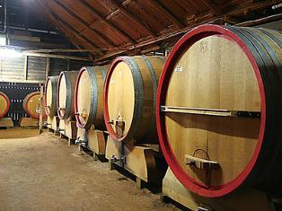 オーストラリアワインは世界で愛されるワイン!昨日も今日も明日も..のサムネイル画像