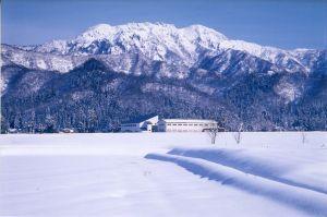 米どころ魚沼が自信をもっておすすめする日本酒、八海山の魅力の画像